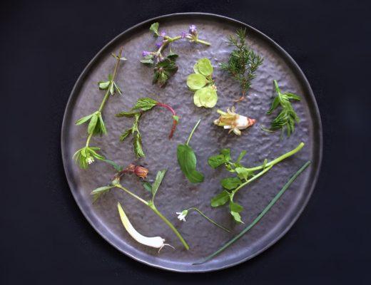 Velsmagende urter ved Moesgård